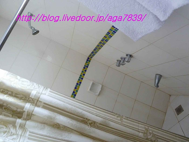 P11002871