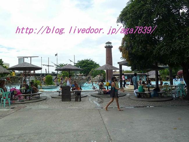 P11004541