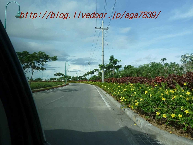 P11104641