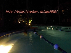 P11805161