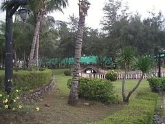 SANY01451