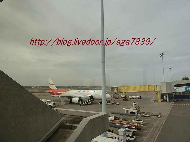 P11900221
