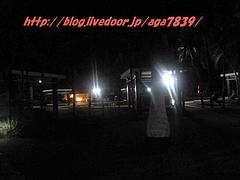 P12308421