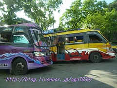 P12006341