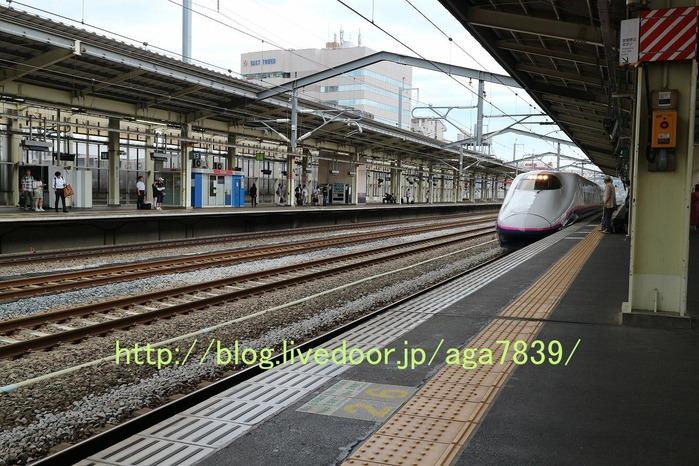 IMG_3559