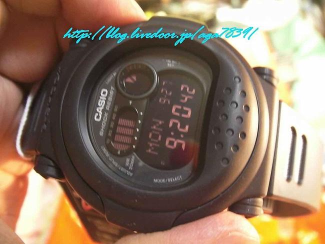 SANY00151