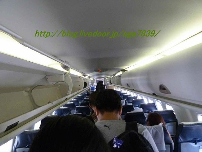 P11002191