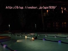 P11805101