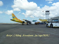 P12007731