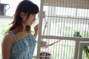 jp_midori_satsuki-team_imgs_2_6_2671b601