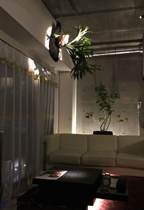 麻布1R店内02
