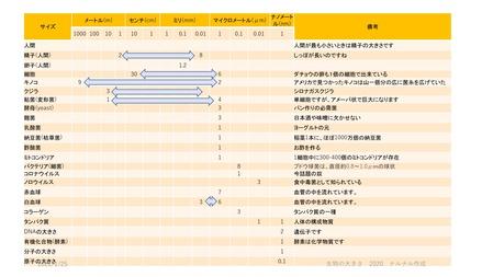 生物の大きさ表2_page-0001