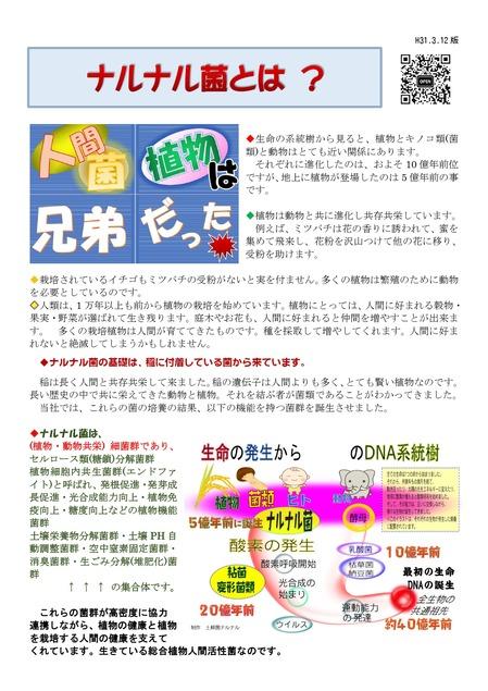 001ナルナル菌新説解説5_pages-to-jpg-0001