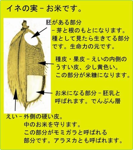 ijh001+4