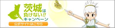 ibamake_banner