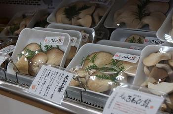 アグリパーク竜王野菜特産品直売所 (5)