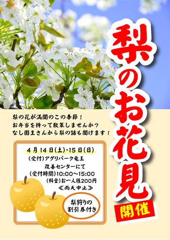 Microsoft Word - 梨お花見ポスター