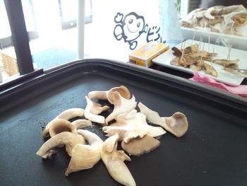 あわび茸のバター焼き試食販売 (7)
