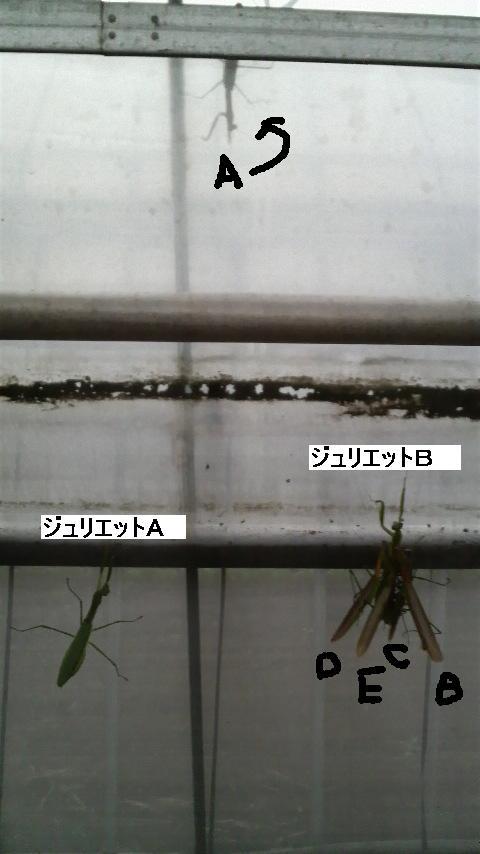 f10ed9be.jpg