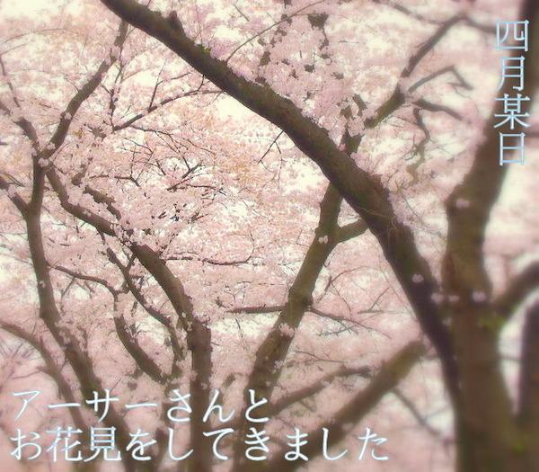 【APH】お花見あわせ《アサ菊》その2(カプ写編)