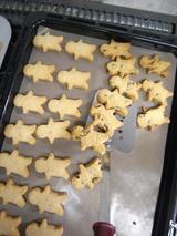 人型クッキーおしくらまんじゅう