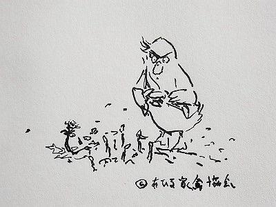 180318家禽春の観察