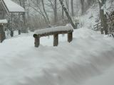 積雪40cm3