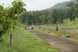 レース風景2
