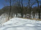 積雪40cm超え4