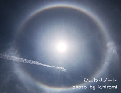 太陽 ハロ 日暈