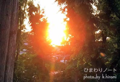 夕日と未確認物体