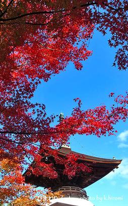 常寂光寺の紅葉。