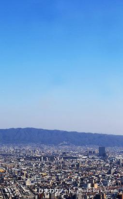 ハルカスヘリポートからの眺め。