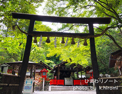 京都 嵯峨野 野宮神社