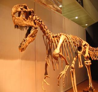 ブログ用幕張恐竜