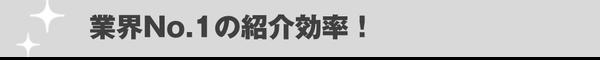 業界No.1の紹介効率!