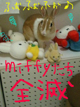 miffy全滅