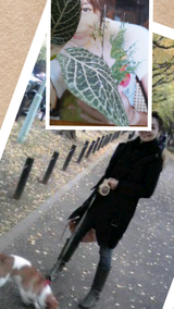 Collage 2012-12-11 19_19_29
