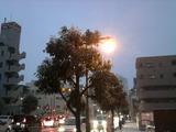 雪の街/20130108