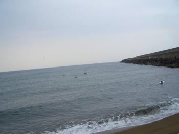 サーフィンの海