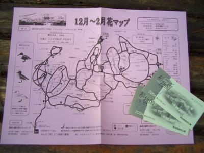 入園時に頂いた花マップ