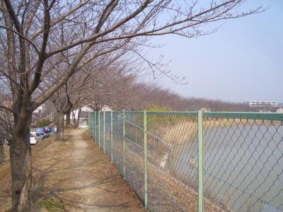 尾張旭市の平池周辺
