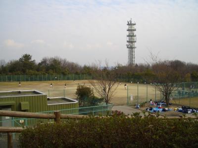 野球場と景色