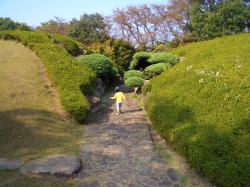 公園内景色