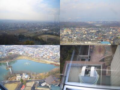 展望塔から見える景色