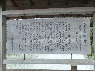 山口県の萩市の観光名所の1つ明神池