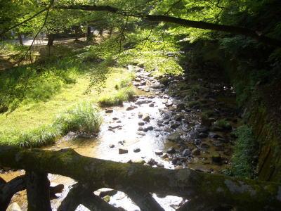 岩屋堂公園に流れる川と景色