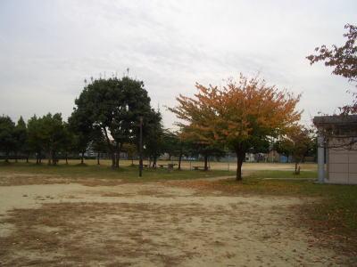 広場に植えられた木も紅葉