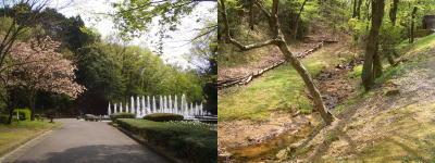 置県100周年記念で出来た広大な里山公園