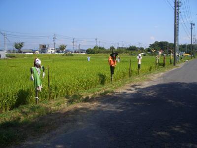 案山子のある田んぼの風景